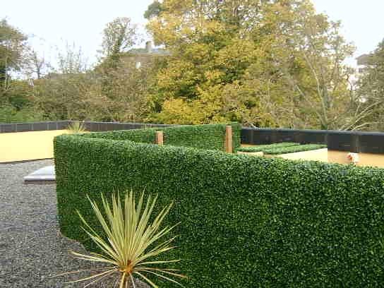 evergreen interiors   articifial plants cork   live plants cork